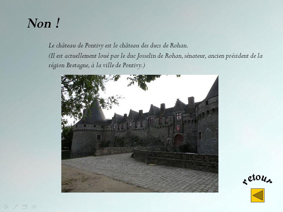 Où est situé le Château des Ducs de Bretagne, figure emblématique de lhistoire de la Bretagne ? A Pontivy A Fougères A Nantes