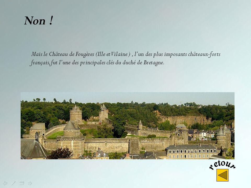 Non .Le château de Pontivy est le château des ducs de Rohan.