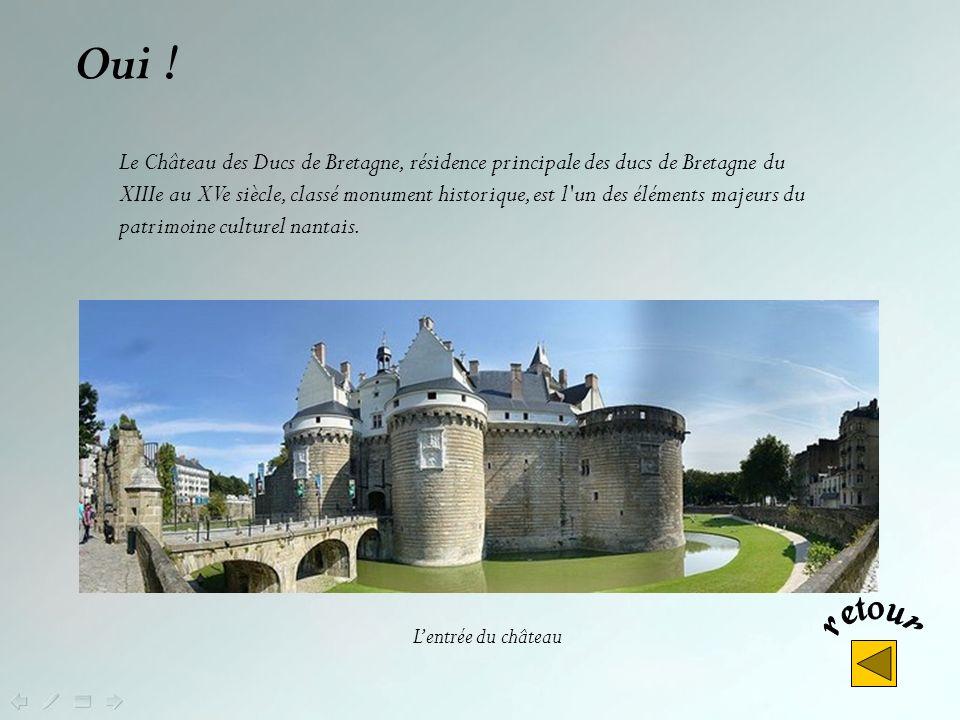 Non ! Mais le Château de Fougères (Ille et Vilaine ), lun des plus imposants châteaux-forts français, fut lune des principales clés du duché de Bretag