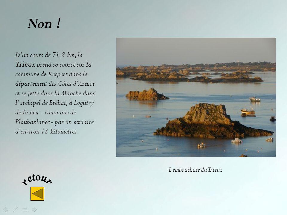 De ces 3 fleuves bretons lequel est le plus long ? Le Trieux Le Blavet La Rance