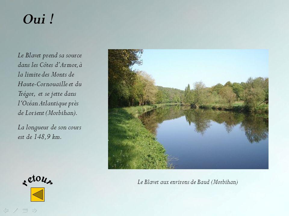 Non ! D'un cours de 71,8 km, le Trieux prend sa source sur la commune de Kerpert dans le département des Côtes dArmor et se jette dans la Manche dans