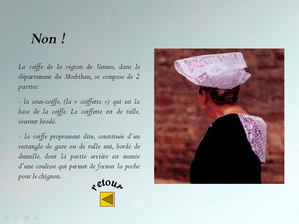 En fait, en Trégor - région de Tréguier - Lannion - Guingamp - dans le département des Côtes dArmor – on trouve 2 coiffes : la Toukenn et la Katiolle Non .