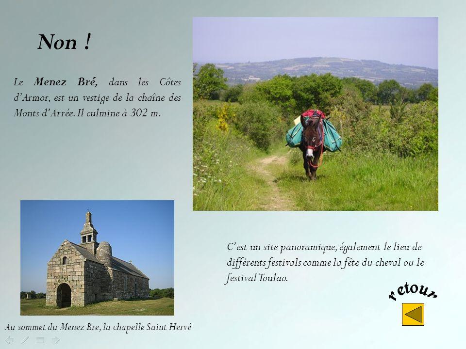 Le Menez-Hom, sur les communes de Plomodiern, Saint Nic, Trégarvan, Dinéault, dans le département du Finistère - à lentrée de la presquîle de Crozon -