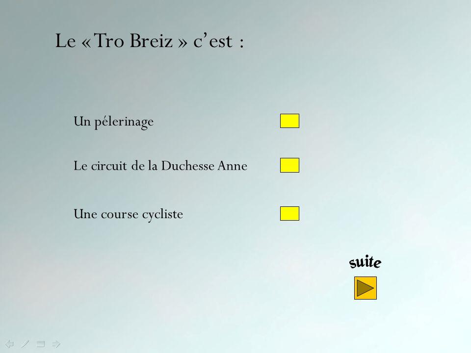 Le Menez Bré, dans les Côtes dArmor, est un vestige de la chaîne des Monts dArrée.