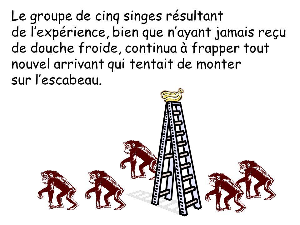 Un troisième singe fut échangé et le processus se répéta. Le quatrième puis le cinquième singe furent échangés, chacun à leur tour et à des intervalle