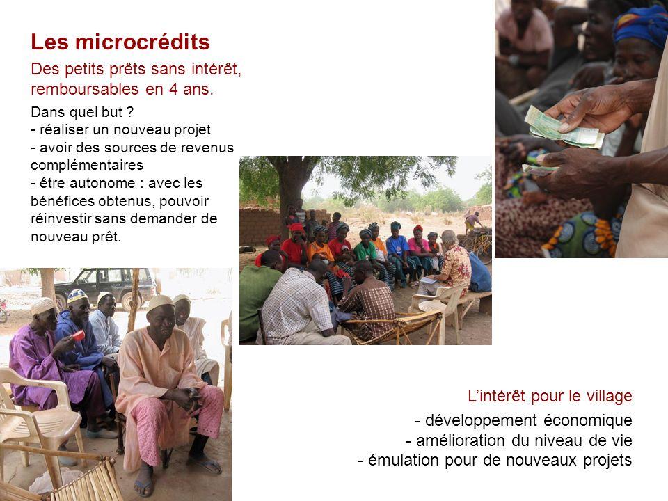 Les microcrédits Des petits prêts sans intérêt, remboursables en 4 ans. Dans quel but ? - réaliser un nouveau projet - avoir des sources de revenus co