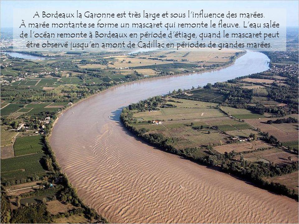Entre Toulouse et Bordeaux le fleuve traverse Agen et reçoit ses principaux affluents sur la rive droite, le Tarn et le Lot issus du système hydrologi
