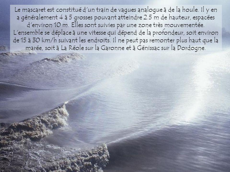 A Bordeaux la Garonne est très large et sous l'influence des marées. À marée montante se forme un mascaret qui remonte le fleuve. L'eau salée de l'océ
