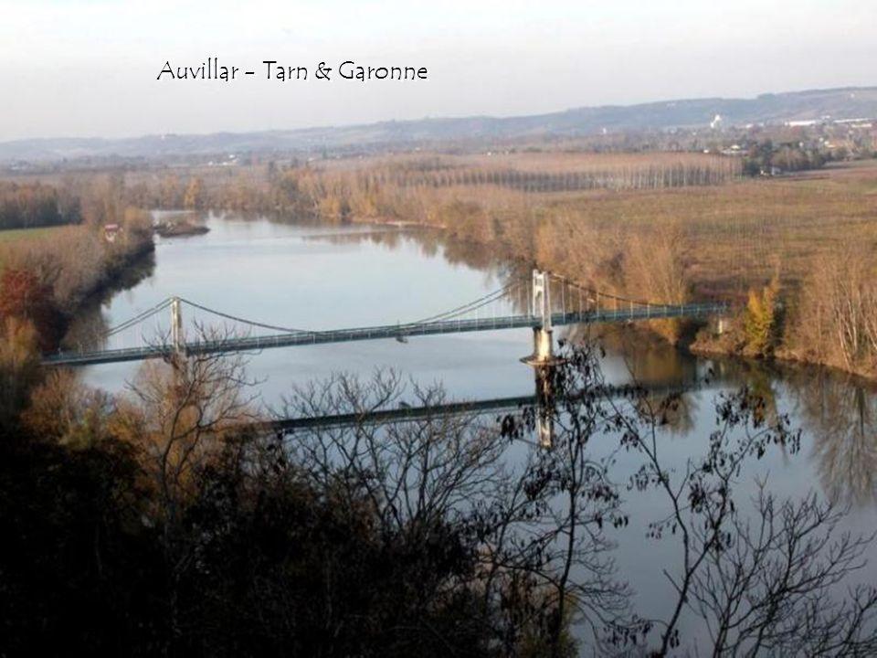 Toulouse - le pont Saint Michel