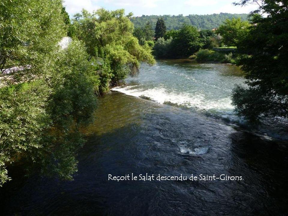 Arrose Saint-Gaudens, franchit les Petites Pyrénées entre Saint-Martory et Martres-Tolosane.