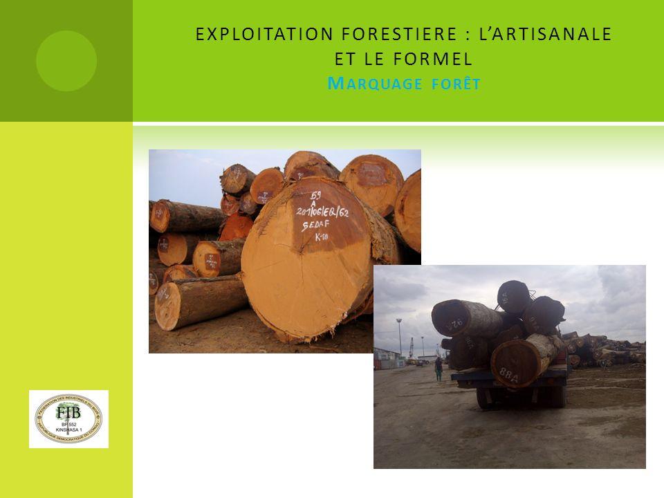 EXPLOITATION FORESTIERE : LARTISANALE ET LE FORMEL M ARQUAGE FORÊT