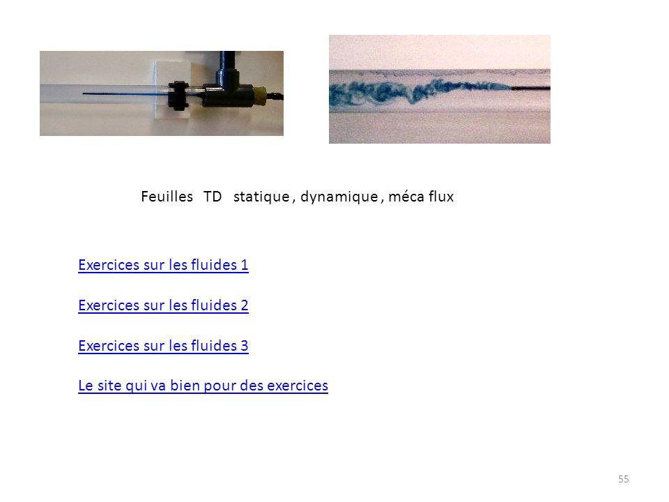 55 Feuilles TD statique, dynamique, méca flux Exercices sur les fluides 1 Exercices sur les fluides 2 Exercices sur les fluides 3 Le site qui va bien