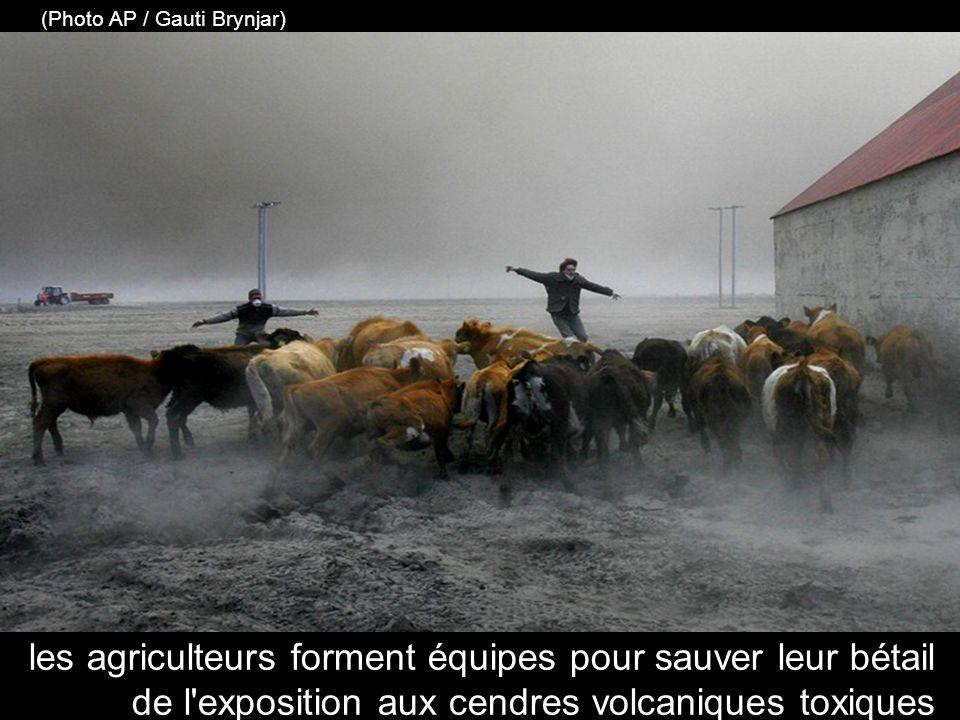 un agriculteur constate le dépôt des cendres volcaniques boueuses sur ses terres (KOLBEINS HALLDOR / AFP / Getty Images)