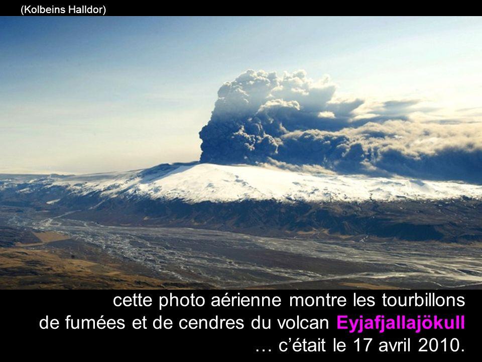 les épaisses couches de cendres volcaniques en dérive ont recouvert certaines régions rurales de l Islande (Photo AP / Gauti Brynjar)