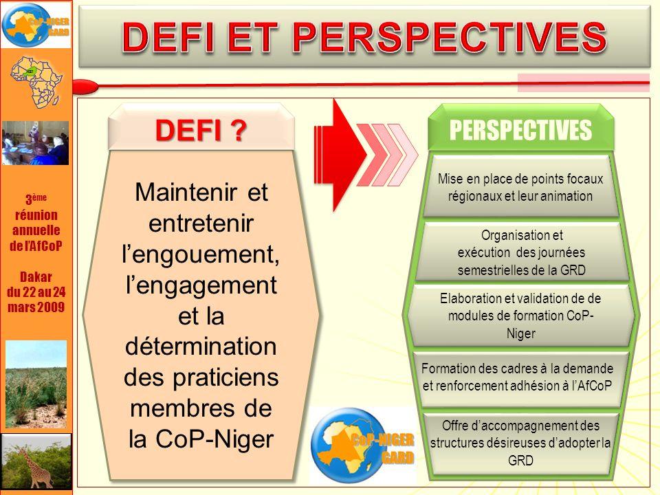 3 ème réunion annuelle de lAfCoP Dakar du 22 au 24 mars 2009 Maintenir et entretenir lengouement, lengagement et la détermination des praticiens membres de la CoP-Niger DEFI .