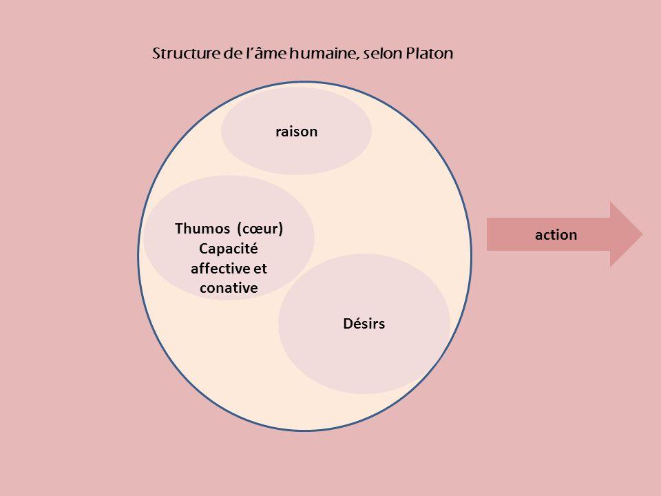 raison Désirs Thumos (cœur) Capacité affective et conative Structure de lâme humaine, selon Platon action