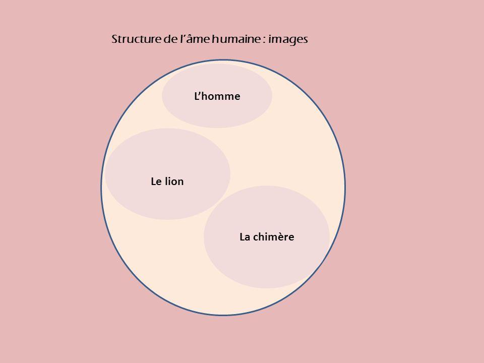 Lhomme La chimère Le lion Structure de lâme humaine : images