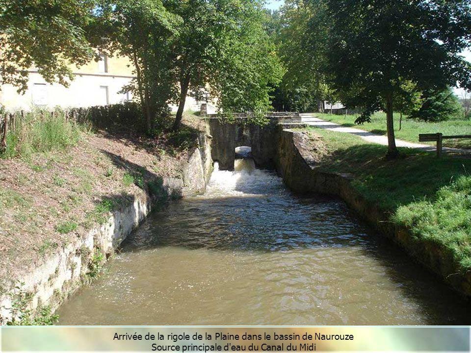 La Rigole de la Plaine et le ruisseau Laudot Rigole de la Plaine
