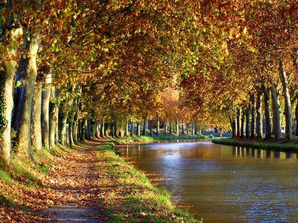 Le Canal du Midi Cliquer pour avancer