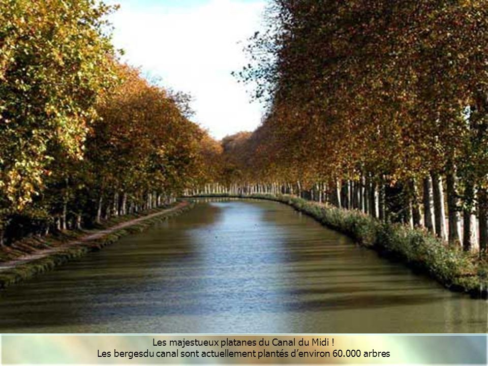 Le Canal du Mid,i ou Canal des Deux Mers, relie la Garonne à la mer Méditerranée. Il fournit, avec le canal latéral à la Garonne, une voie navigable d