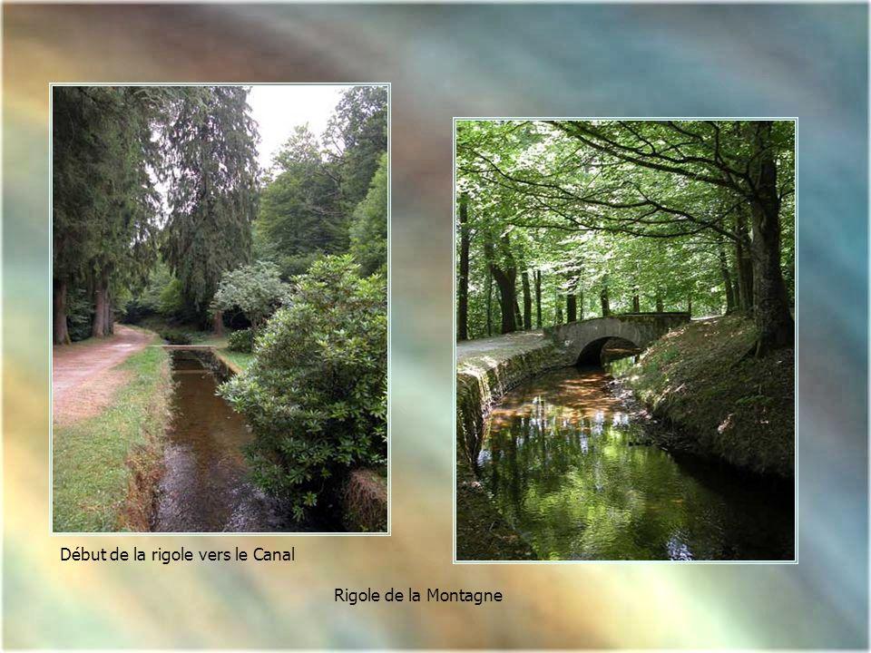 Le ruisseau d'Alzeau après la prise d'eau