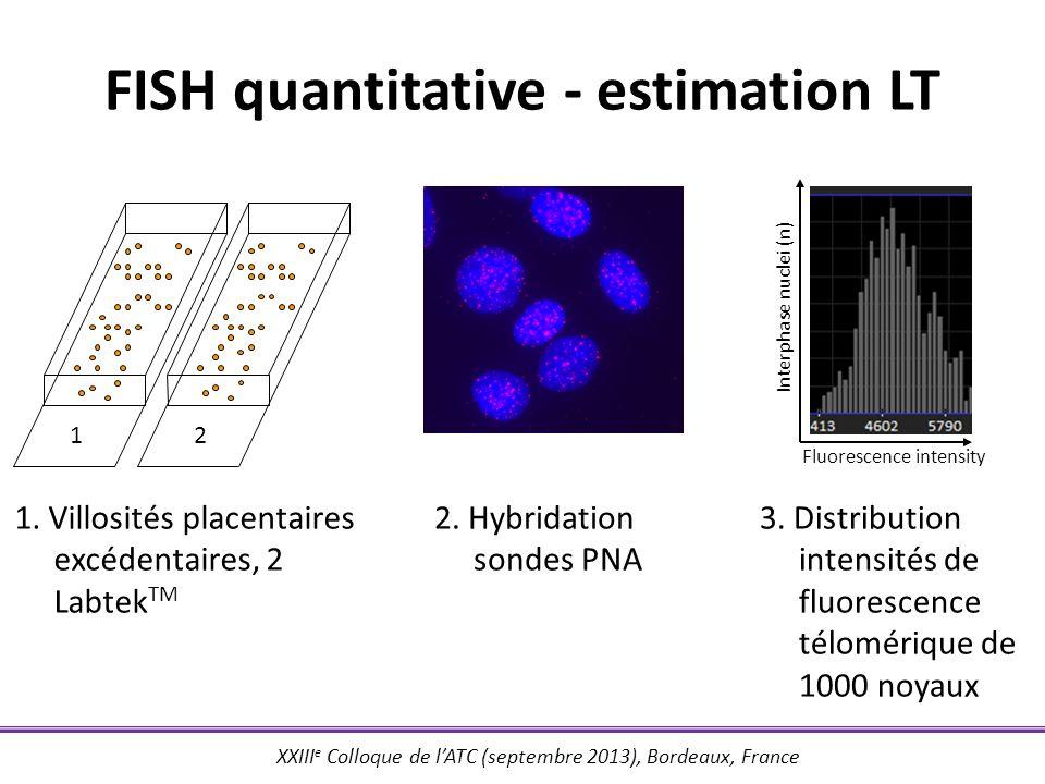 XXIII e Colloque de lATC (septembre 2013), Bordeaux, France FISH quantitative - estimation LT 2. Hybridation sondes PNA 3. Distribution intensités de