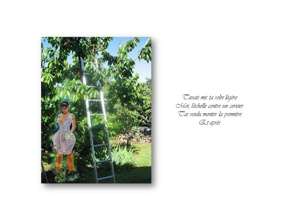 T avais mis ta robe légère Moi, l échelle contre un cerisier T as voulu monter la première Et après