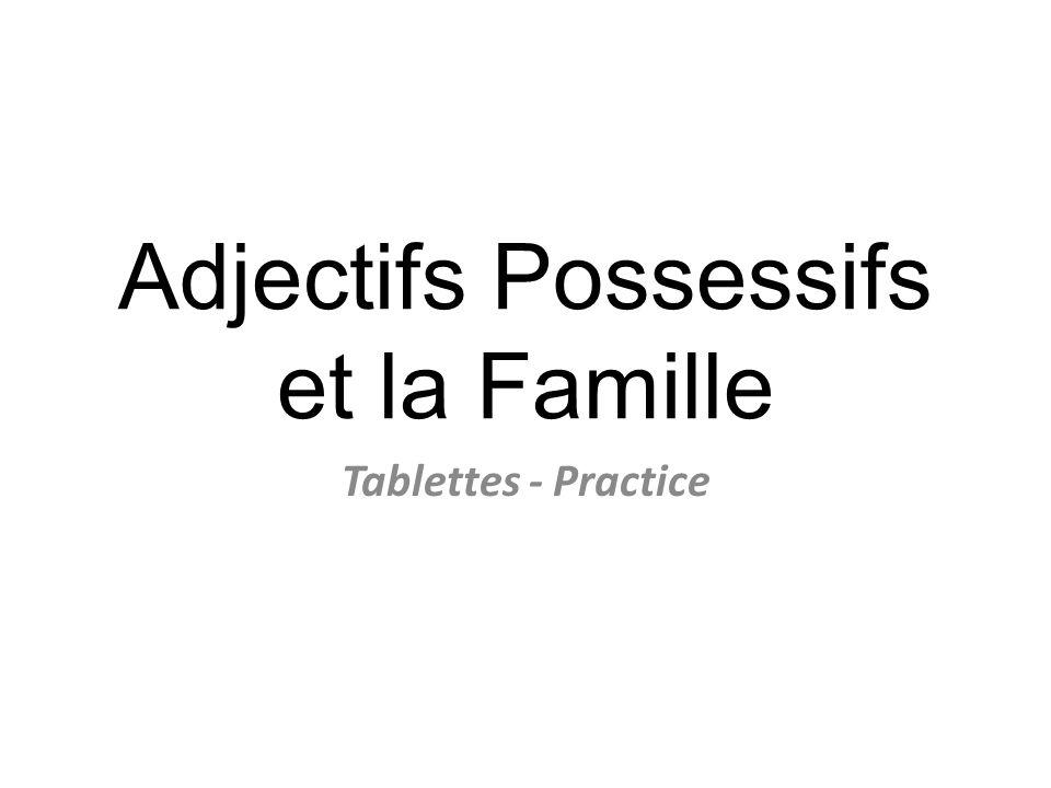 Adjectifs Possessifs et la Famille Tablettes - Practice