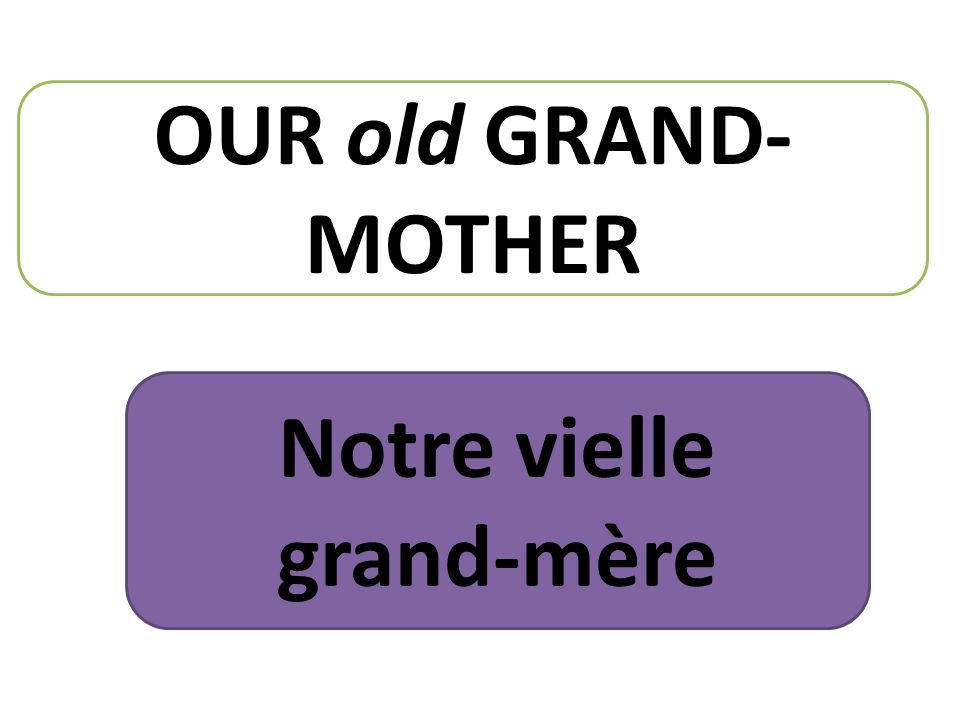 OUR old GRAND- MOTHER Notre vielle grand-mère