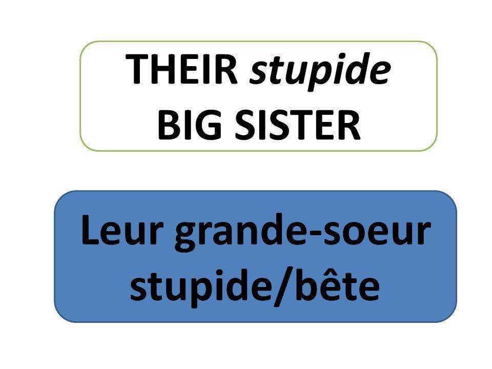 THEIR stupide BIG SISTER Leur grande-soeur stupide/bête