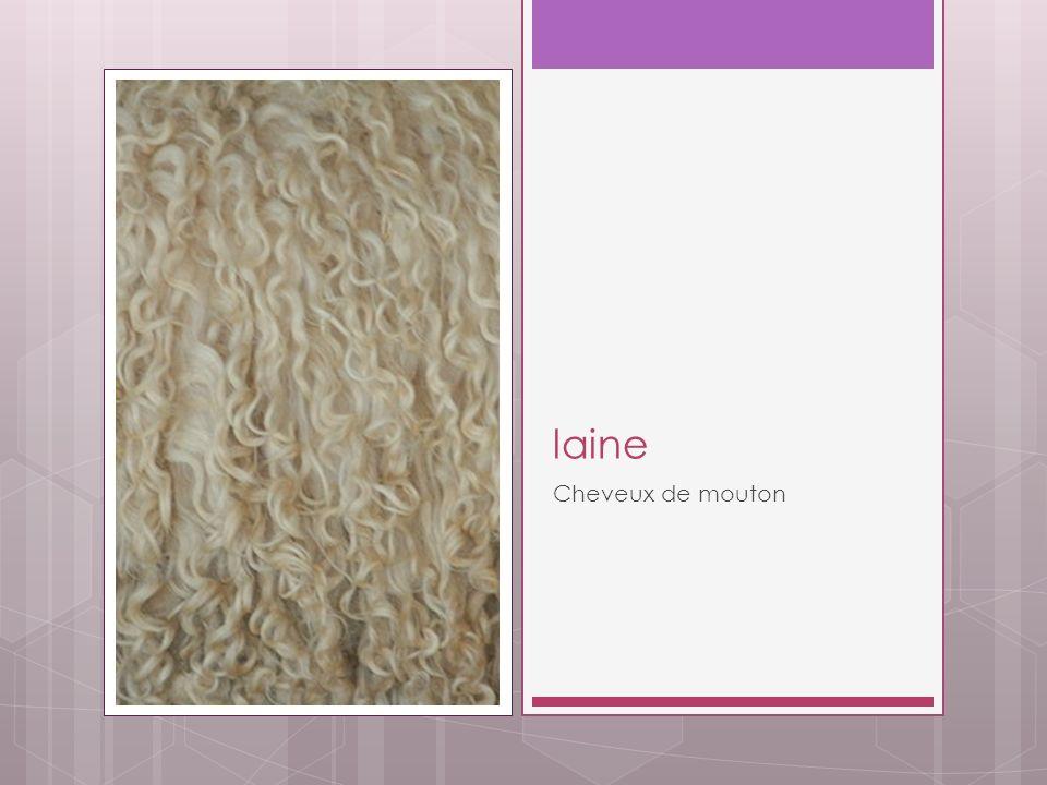 laine Cheveux de mouton