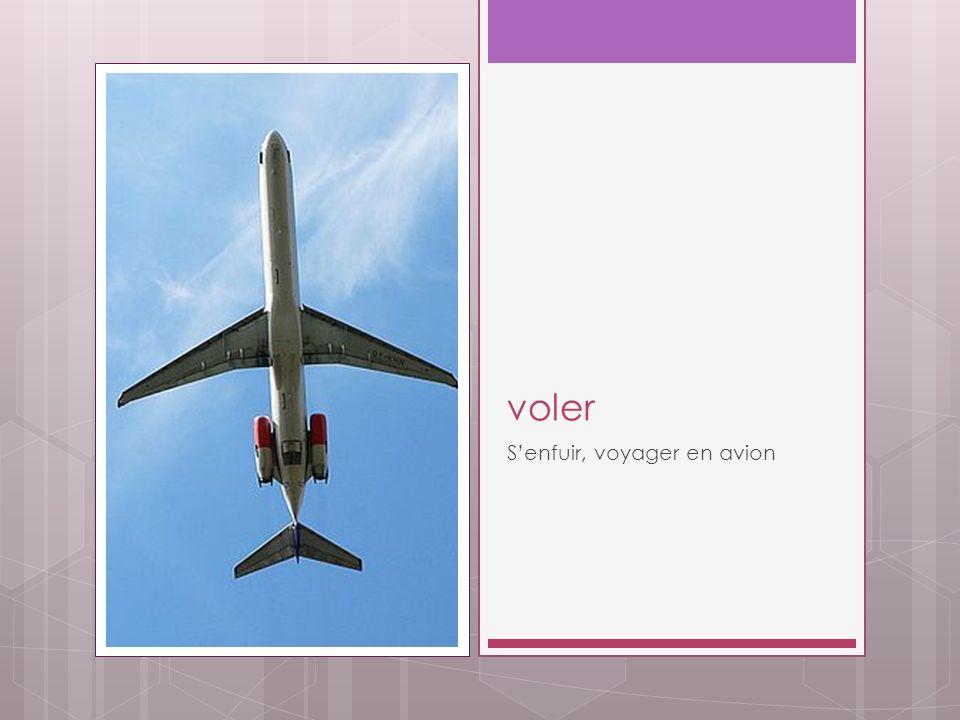 voler Senfuir, voyager en avion