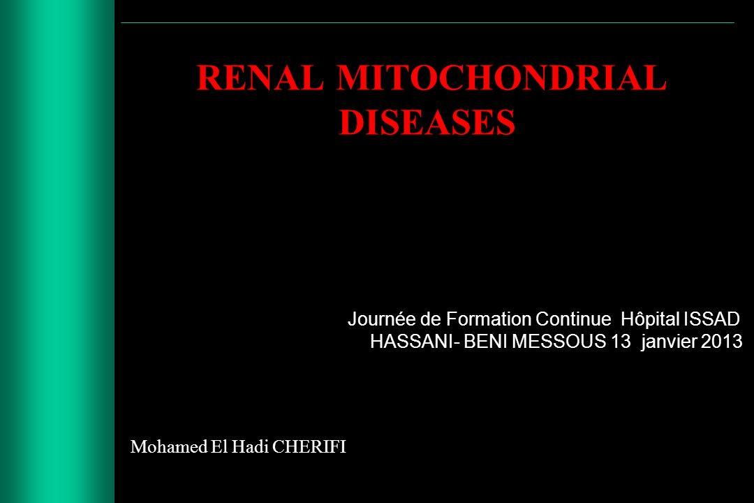 RENAL MITOCHONDRIAL DISEASES Journée de Formation Continue Hôpital ISSAD HASSANI- BENI MESSOUS 13 janvier 2013 Mohamed El Hadi CHERIFI