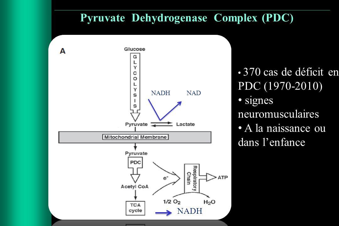 NADH 370 cas de déficit en PDC (1970-2010) signes neuromusculaires A la naissance ou dans lenfance NADHNAD Pyruvate Dehydrogenase Complex (PDC)