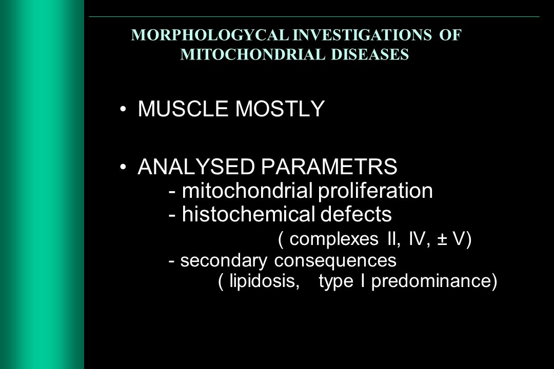 MORPHOLOGYCAL INVESTIGATIONS OF MITOCHONDRIAL DISEASES MUSCLE MOSTLY ANALYSED PARAMETRS - mitochondrial proliferation - histochemical defects ( comple