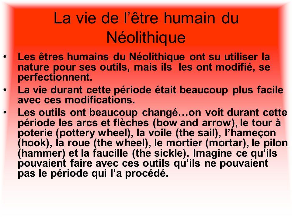 La vie de lêtre humain du Néolithique Les êtres humains du Néolithique ont su utiliser la nature pour ses outils, mais ils les ont modifié, se perfect