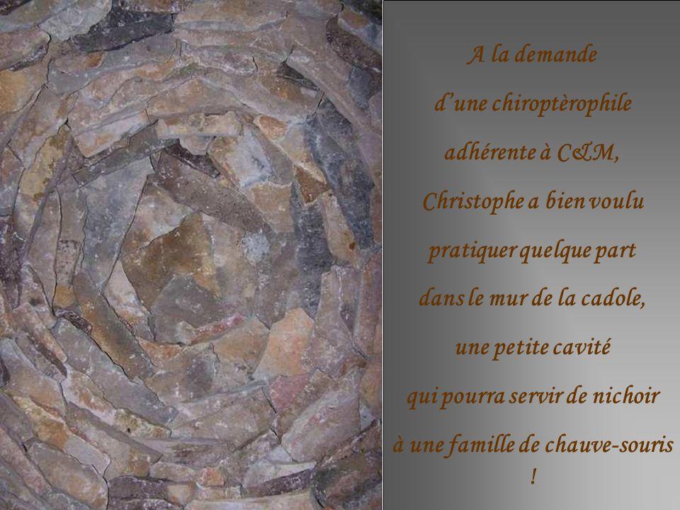 A la demande dune chiroptèrophile adhérente à C&M, Christophe a bien voulu pratiquer quelque part dans le mur de la cadole, une petite cavité qui pourra servir de nichoir à une famille de chauve-souris !