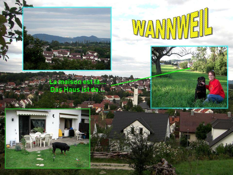 Nous – Wir Au beau 19 Gorges de Gardon Saintes Maries de la mer Donauquelle Vellefaux Der Pfänder LArdèche Le Mont Aigoual