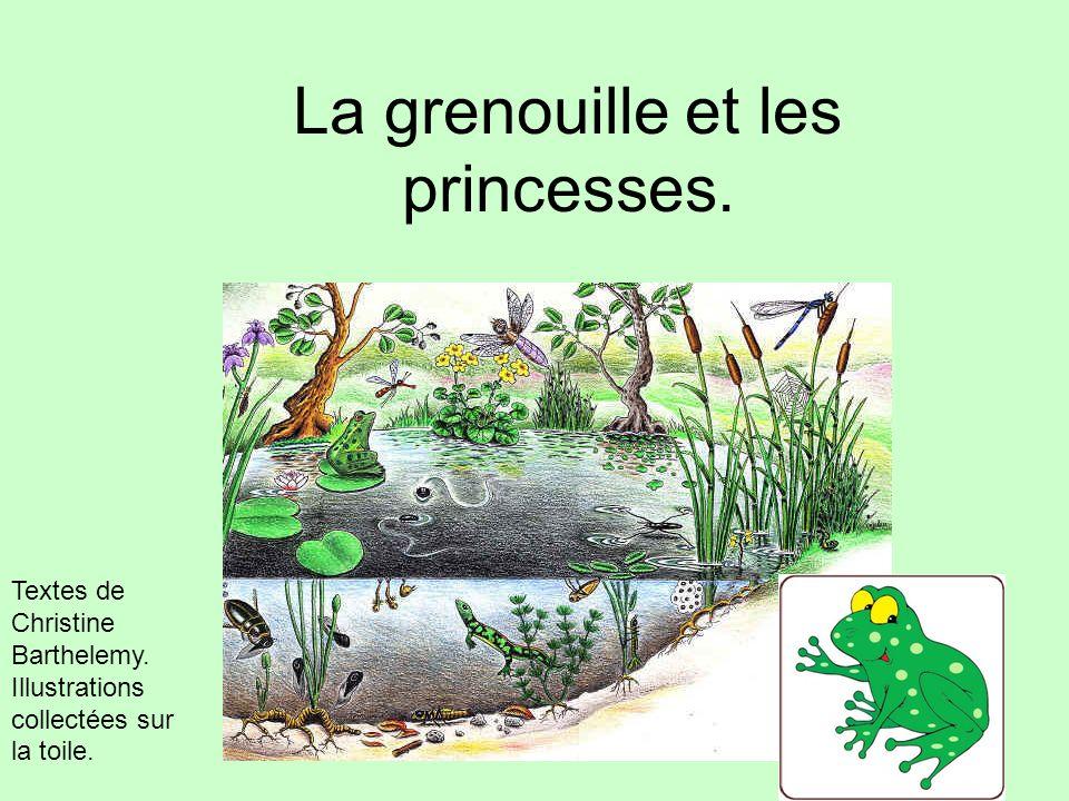 La grenouille et les princesses. Textes de Christine Barthelemy. Illustrations collectées sur la toile.