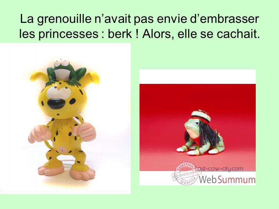 La grenouille navait pas envie dembrasser les princesses : berk ! Alors, elle se cachait.