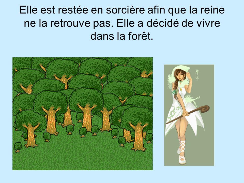 Elle est restée en sorcière afin que la reine ne la retrouve pas. Elle a décidé de vivre dans la forêt.