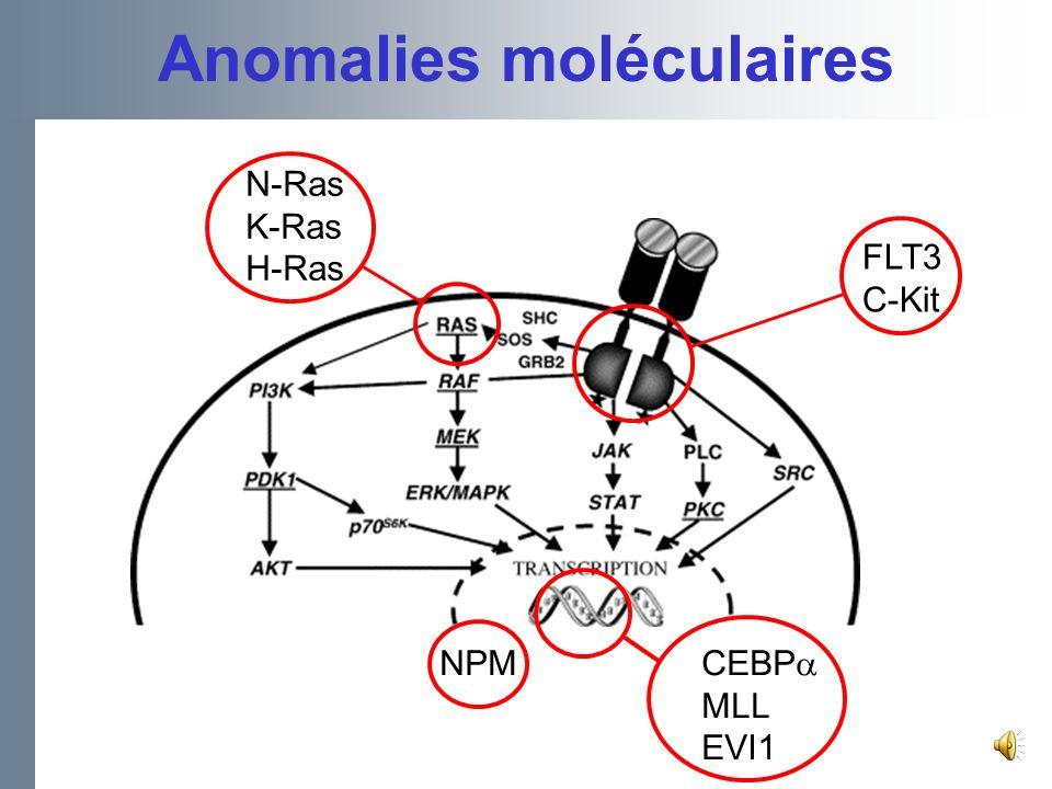 Dissection Moléculaire des LAM avec Caryotype Normal Pronostic favorable –Mutations dans CCAAT/enhancer binding –Proteine du gène α (CEBPA) Pronostic défavorable –FLT3: Internal tandem duplication (ITD), surtout en labsence du wild type –MLL (myeloid/lymphoid leukemia gene) : Partial tandem duplication (PTD) – Hyper expression du BAALC –