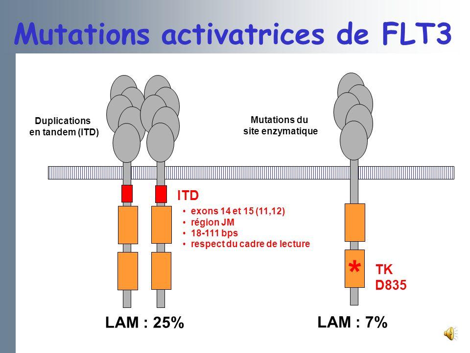 ITD TK D835 * Duplications en tandem (ITD) Mutations du site enzymatique LAM : 25% LAM : 7% exons 14 et 15 (11,12) région JM 18-111 bps respect du cadre de lecture Mutations activatrices de FLT3