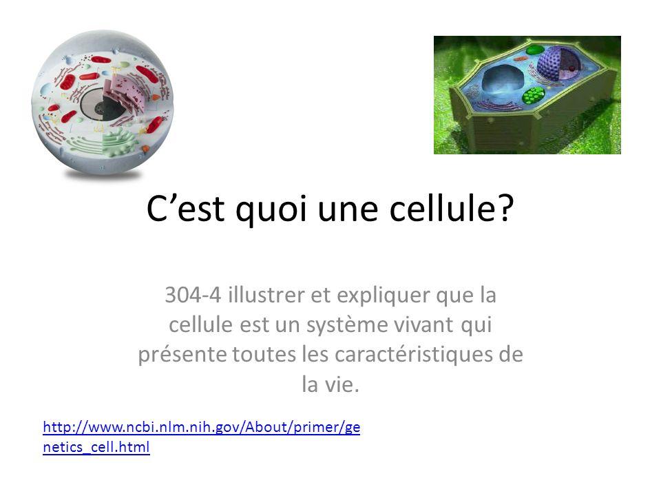 Cest quoi une cellule? 304-4 illustrer et expliquer que la cellule est un système vivant qui présente toutes les caractéristiques de la vie. http://ww