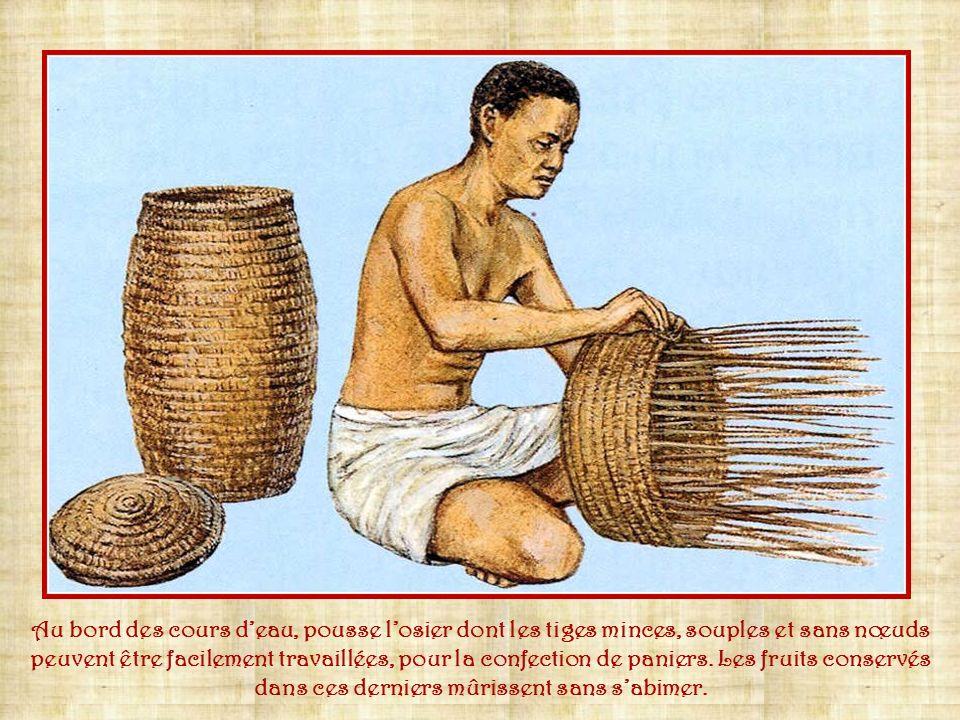 Le métier à tisser est horizontal. Ce sont les femmes qui exercent lactivité du tissage. Le textile soigneusement tissé est destiné aux vêtements et à