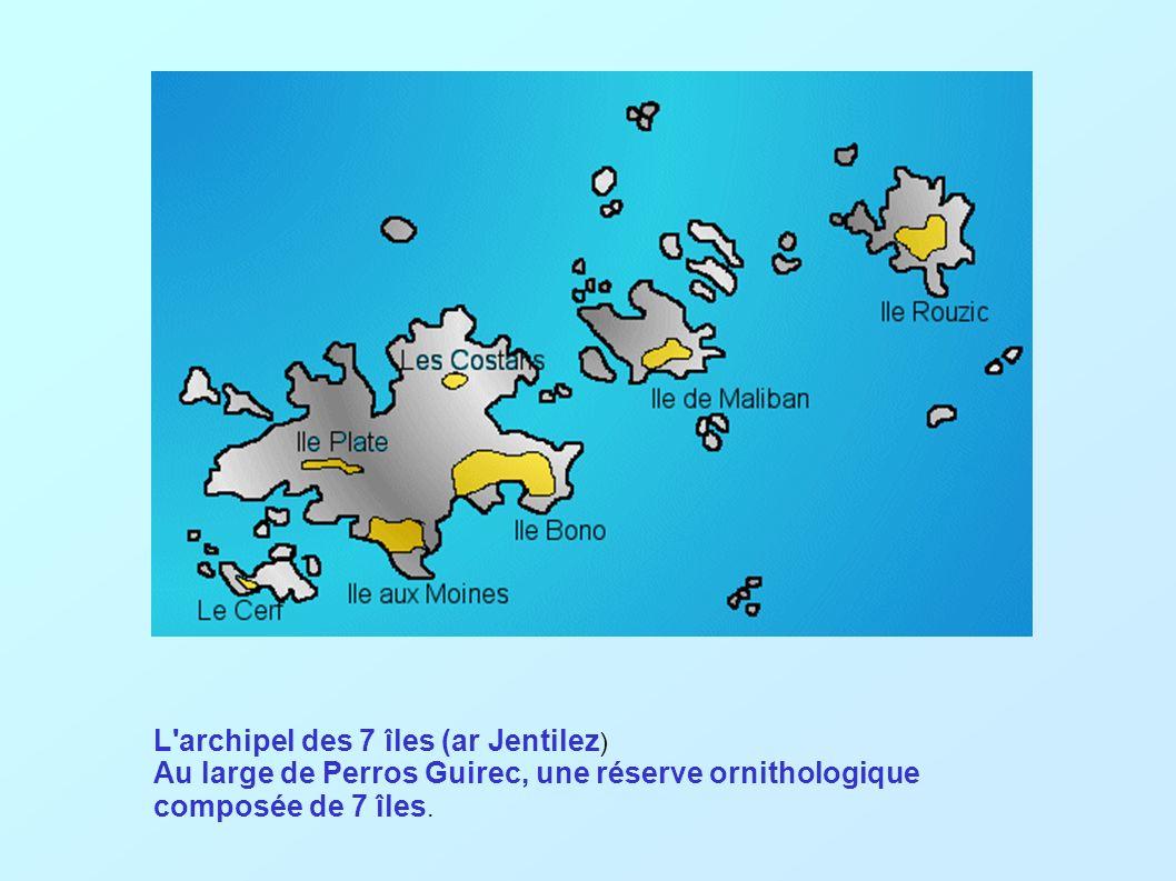 L archipel des 7 îles (ar Jentilez ) Au large de Perros Guirec, une réserve ornithologique composée de 7 îles.