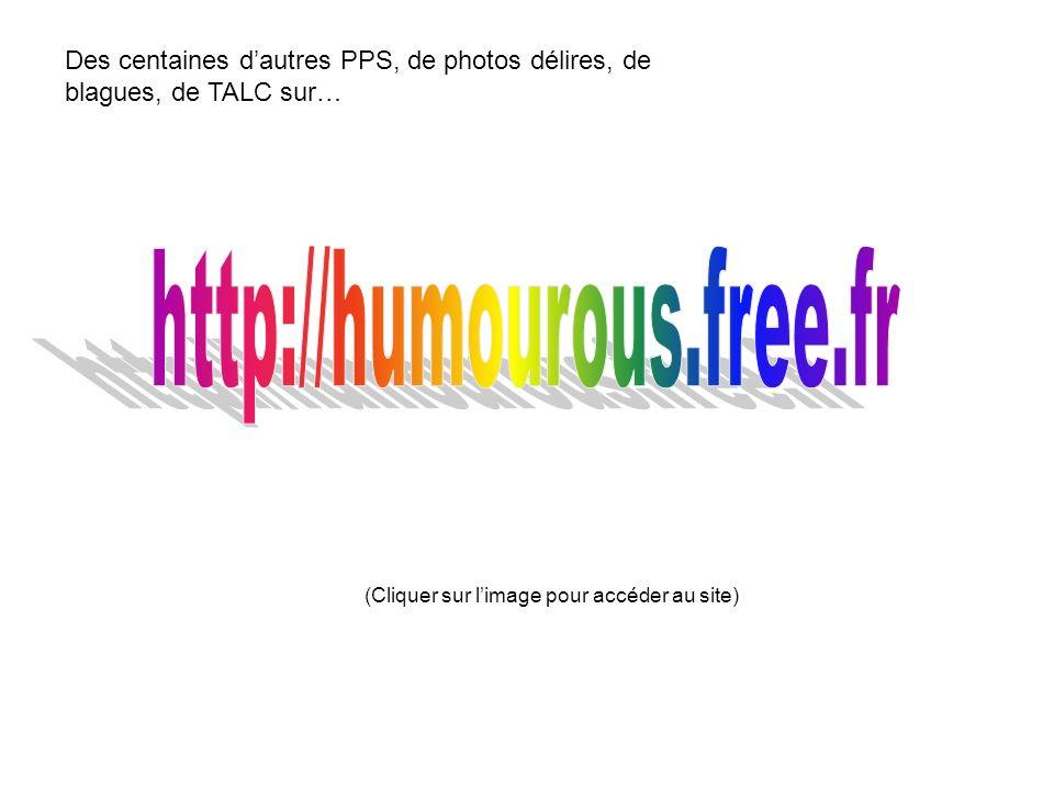 Des centaines dautres PPS, de photos délires, de blagues, de TALC sur… (Cliquer sur limage pour accéder au site)
