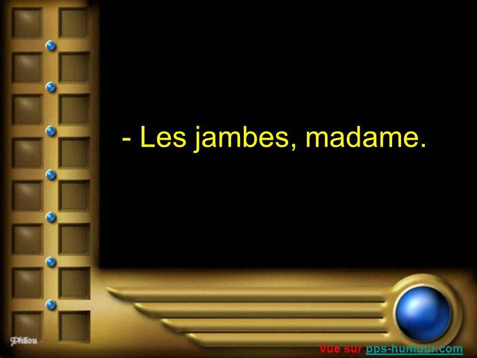 - Les jambes, madame. Vue sur pps-humour.compps-humour.com