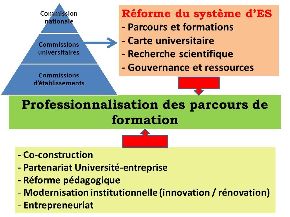 Professionnalisation des parcours de formation Réforme du système dES - Parcours et formations - Carte universitaire - Recherche scientifique - Gouver