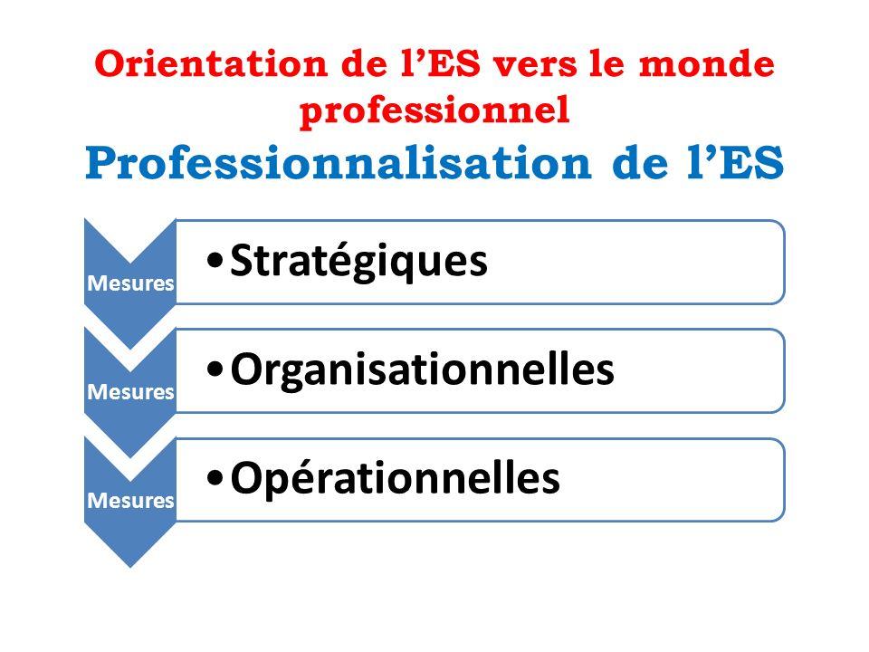Orientation de lES vers le monde professionnel Professionnalisation de lES Mesures Stratégiques Mesures Organisationnelles Mesures Opérationnelles